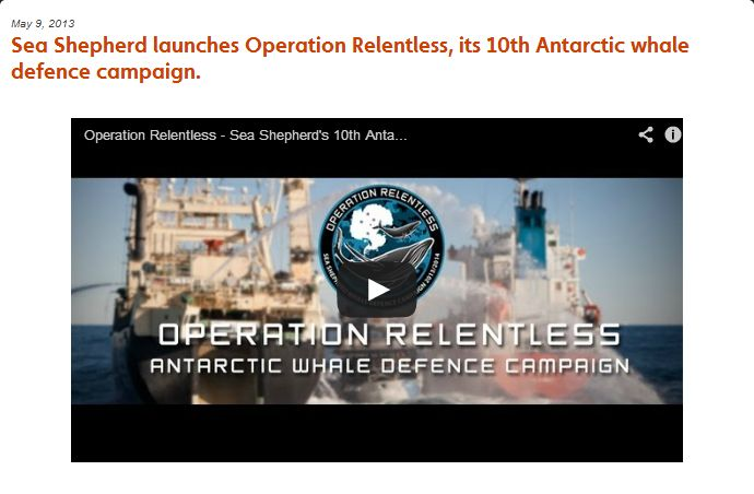 Sea Shepherd relentless
